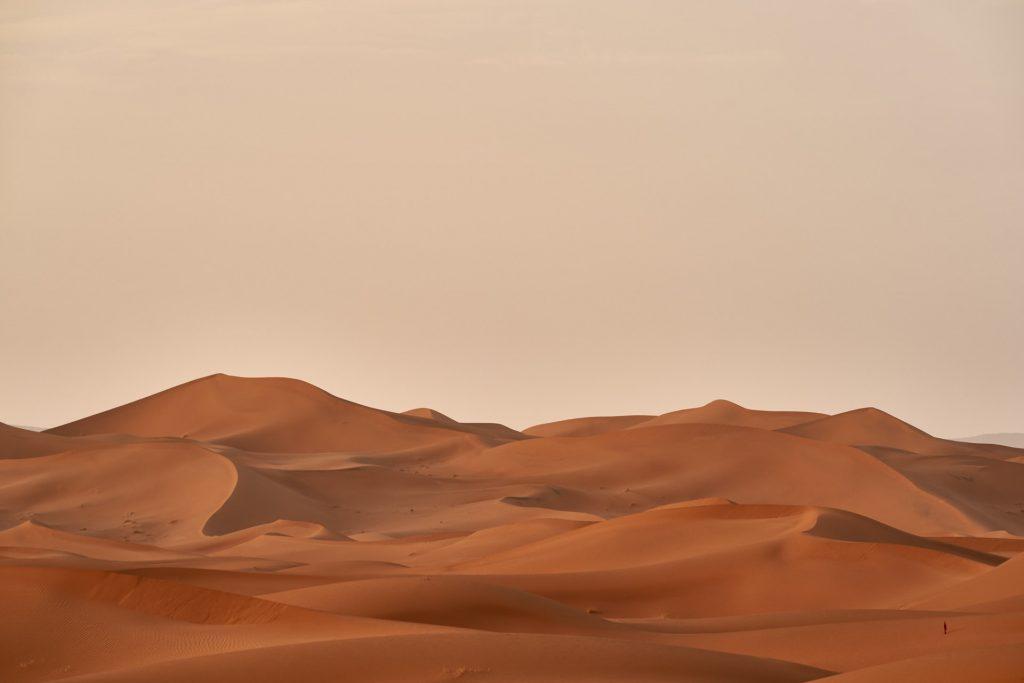 Desierto simbolizando la falta de actividad al inicio de una carrera de marketing